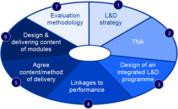 Learning & Development Diagram 2